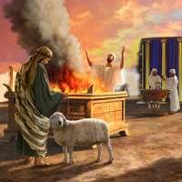 Les Offrandes du Sanctuaire : Lv 1-7